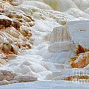 Mammoth Hot Springs Up Close Poster