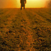 Man In Field At Sunset Poster