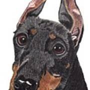 Manchester Terrier Vignette Poster