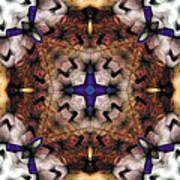 Mandala 17 Poster