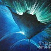 Manta At The Surface Poster