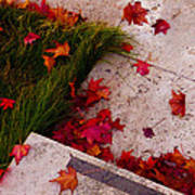 Maple Leaf Fall 3 - The Getty Poster