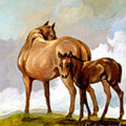 Mare And Foal Poster by Patricia Howitt