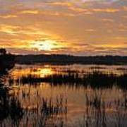 Marsh Sunrise 2 Poster