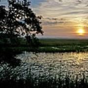 Marsh View Poster