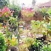 Martha's Garden Poster