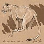 Masai Lioness Poster by Aaron Blaise