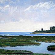 Massachussetts Marsh Morning Poster by Lorraine McFarland