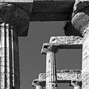 Massive Columns Of Paestum Poster