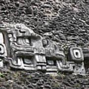 Mayan Hieroglyphics Poster