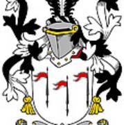 Mcalindem Coat Of Arms Irish Poster