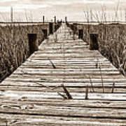 Mcteer Dock - Sepia Poster