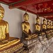 Meditating Buddhas Poster