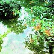 Meditation Pond Poster