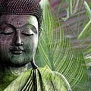 Meditation Vegetation Poster