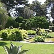 Mediterranean Garden - Cote D Azur Poster