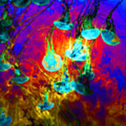 Medusas On Fire 5d24939 Square Poster