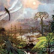 Meganeura In Upper Carboniferous Poster
