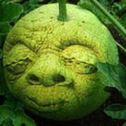 Melon Head Poster