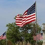 Memorial Day Flag's With Blue Sky Poster by Robert D  Brozek