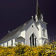 Mendocino Presbyterian Church Poster by Ron Sanford