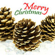 Merry Christmas Poster by Blink Images