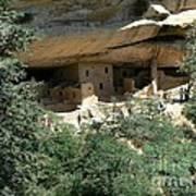 Mesa Verde Cliff Dwellings  Poster
