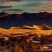 Mesquite Flat Sunrise Poster