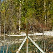 Methow River Springtime Poster