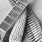 Mexican Revolution, Guitar, Corn Poster
