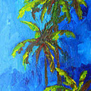 Miami Beach Palm Trees In A Blue Sky Poster