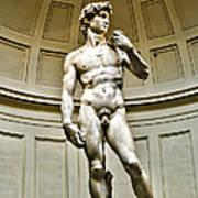 Michelangelos David  Poster