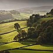 Mid Wales Autumn Landscape Poster