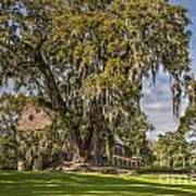 Historic Middleton Place  Poster