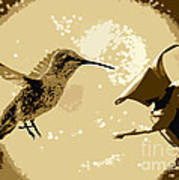Midnight Hummingbird Poster