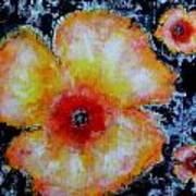 Midnight Poppies Poster