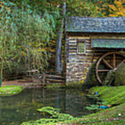 Mill Pond In Woods Poster