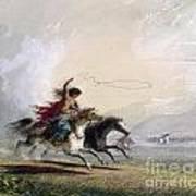 Miller - Shoshone Woman Poster