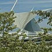 Milwaukee Art Museum Through Flowered Trees Poster
