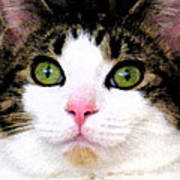 Mina's Green Eyes Poster
