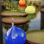 Missouri Botanical Garden Six Glass Spheres And Lilly Pads Img 2464 Poster