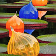 Missouri Botanical Garden Six Glass Spheres And Lilly Pads Img 5490 Poster