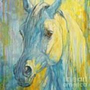 Misterious Blues Poster by Silvana Gabudean Dobre