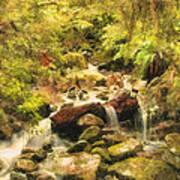 Misty Creek Poster