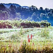 Misty Field In Blue Ridge Mountain Farmlands Poster