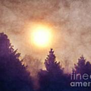 Misty Forest Sunrise Poster