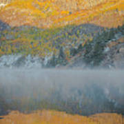 Misty Lake With Aspen Trees Poster