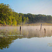 Misty Morning Lake Poster