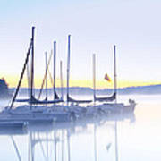 Misty Morning Sailboats Poster
