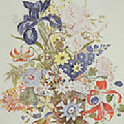 Mixed Flowers In A Cornucopia Poster